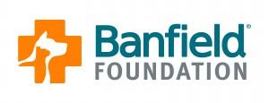 BanfieldFoundationIdeasCompOL